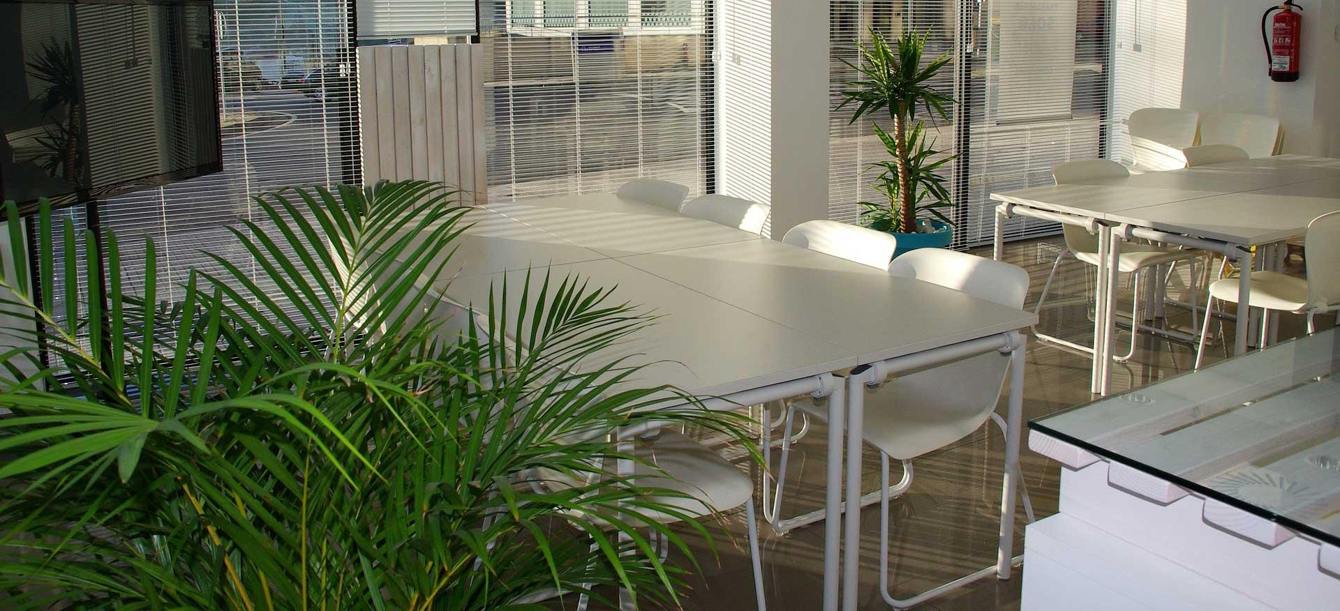 indoor-plant-hire-01