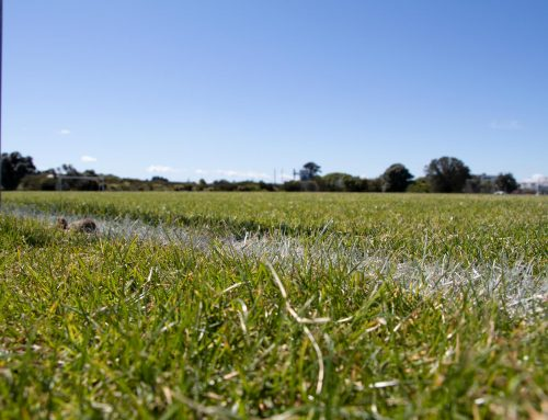Maintaining The Footy Field