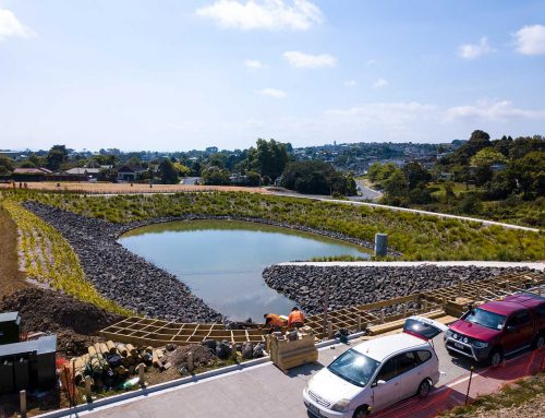 Landscape construction for Auckland subdivisions