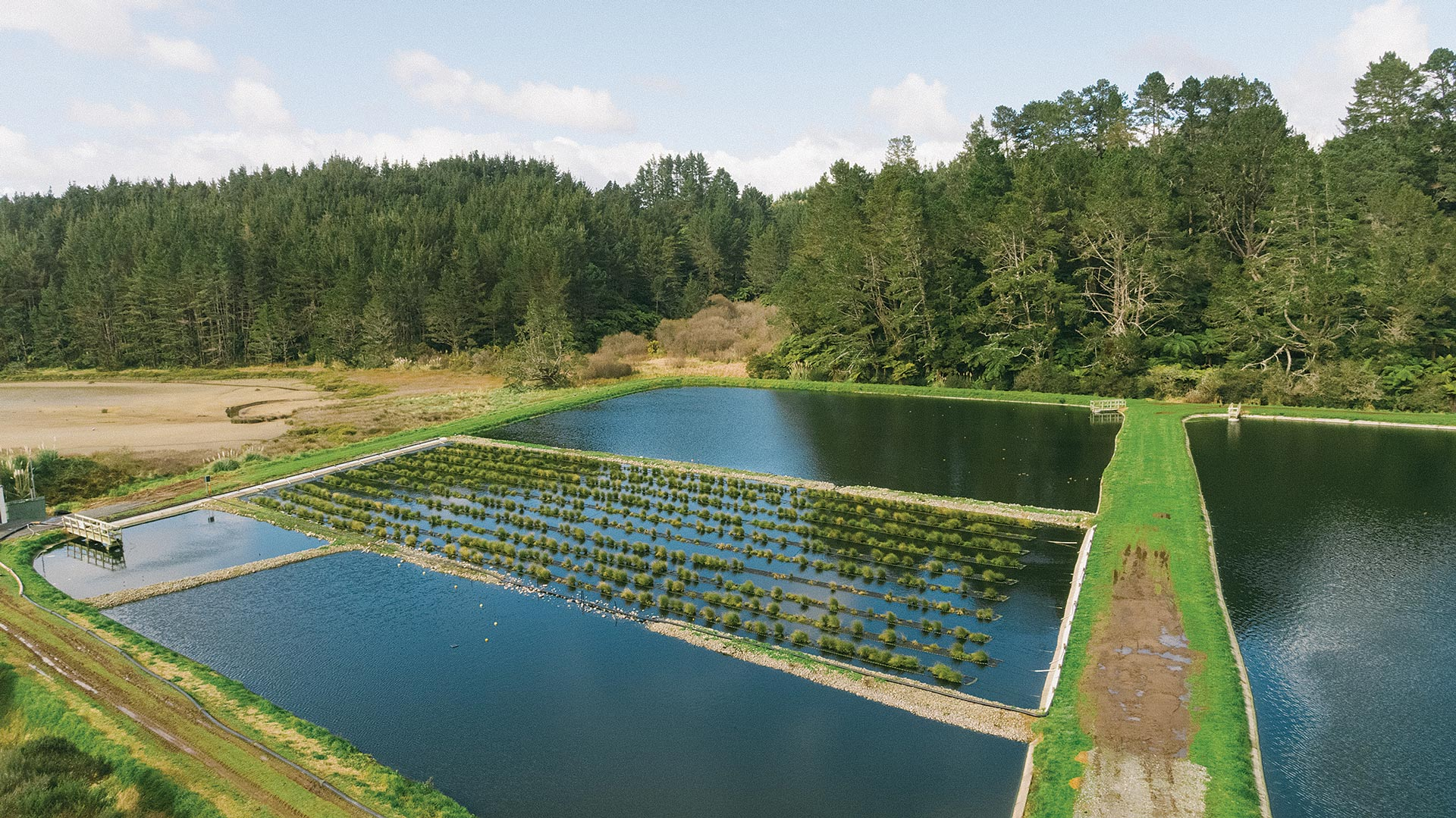 floating-wetlands-0002