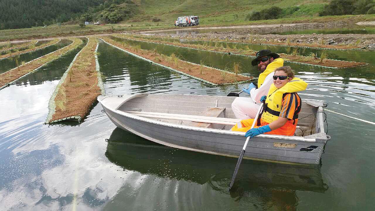 floating-wetlands-ohope-02