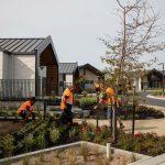 job-landscape-gardeners