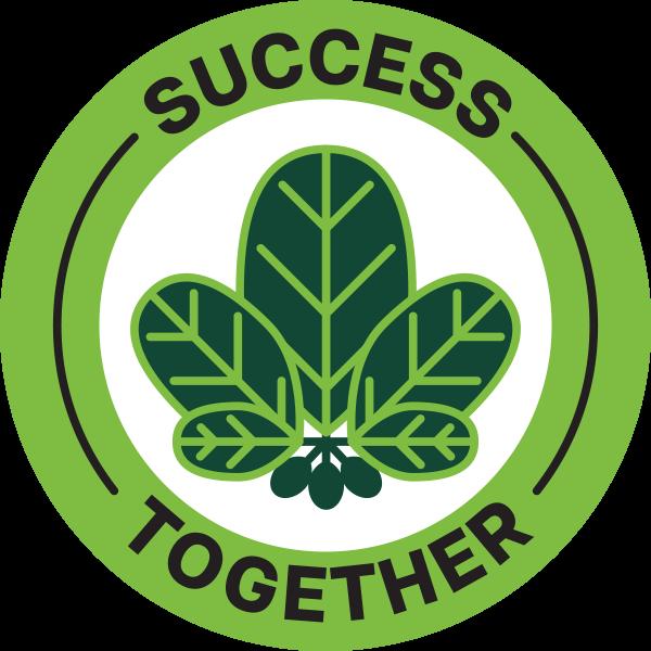 PP_VALUES_Success-600