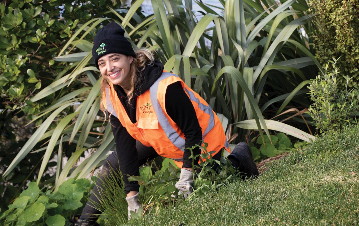 job-vacancy-gardener-auckland